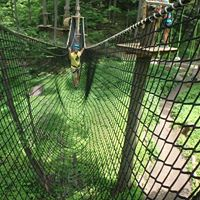 treetop trekking - WayHomies! It's Time to Experience Ontario's Lake Country!