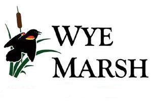 wye marsh 300x206 - Art in the Marsh