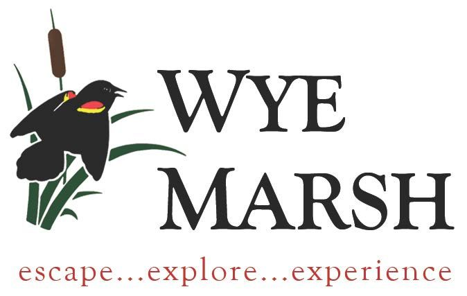 Wye Marsh logo - WINTER PURSUITS FOR KIDS