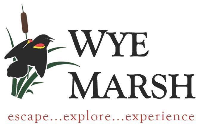 Wye Marsh logo 0 - MARSH BY MOONLIGHT