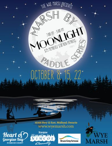marshbmoonlight - MARSH MOONLIGHT PADDLE SERIES