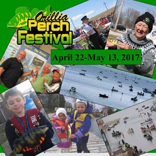 16265240 1547426381938431 7337591466227613847 n - ORILLIA PERCH FESTIVAL