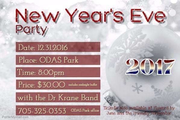 cache 4220433314 - NEW YEAR'S EVE AT ODAS PARK
