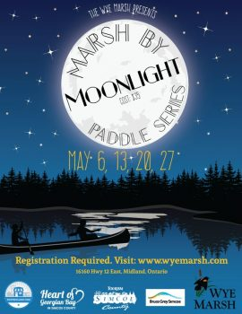 canoe night marsh spring 2017 2 e1493215269383 - MARSH BY MOONLIGHT: SPRING PADDLE SERIES
