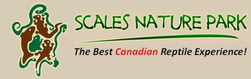 logo e1497549369651 - SCALES NATURE PARK FAMILY FUN DAY