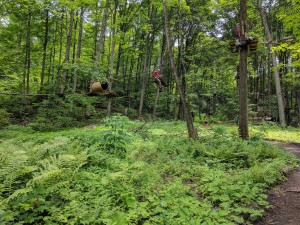 IMG 20170712 131743 1 300x225 - Adventure Days In Ontario's Lake Country With Treetop Trekking By Arbraska!