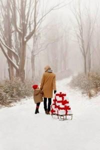 22540194 871377956372766 6747510434401926846 n 200x300 - A Sugarbush Christmas Market