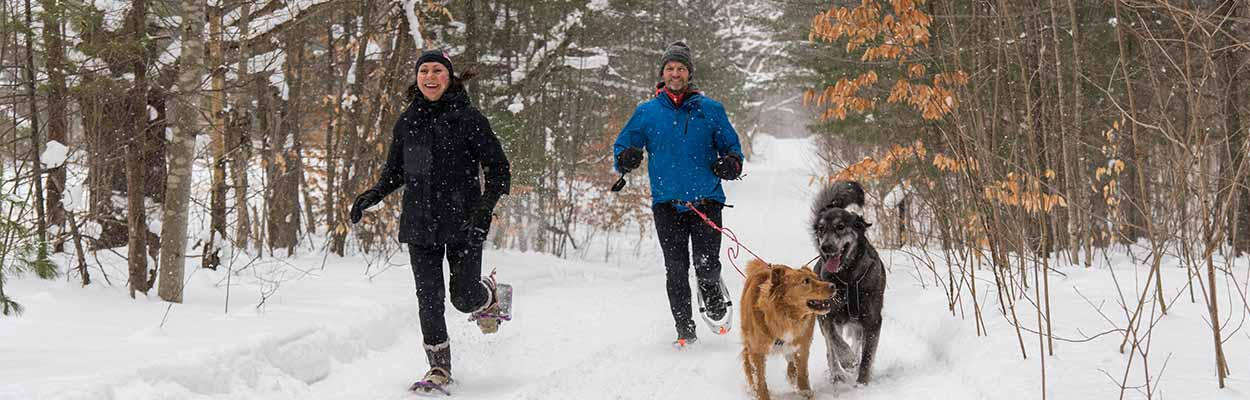 Snowshoeing with dogs 1250x400 - Maple Tours and Winter Fun in Ontario's Lake Country