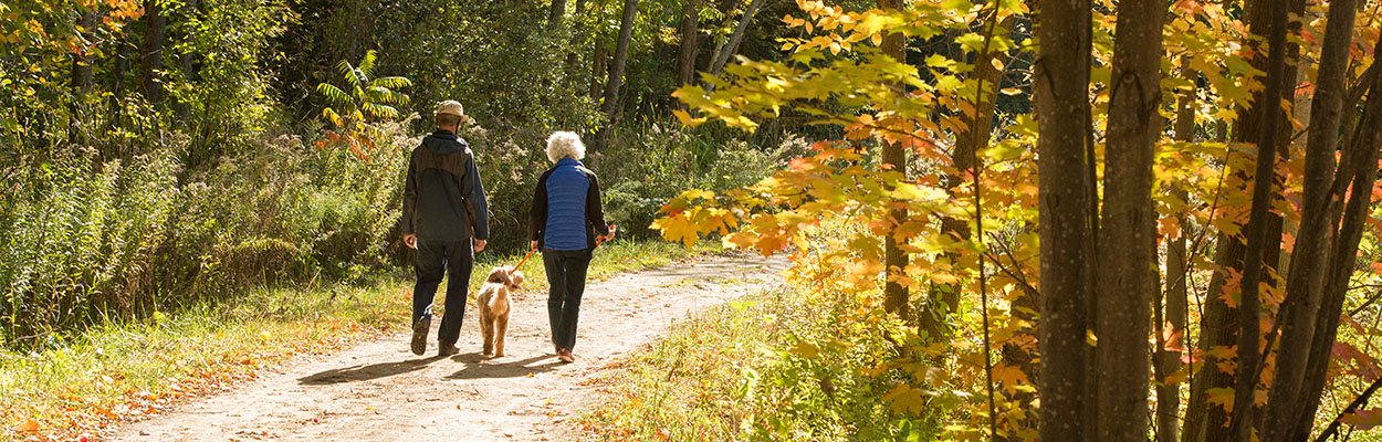 Walking 1250x400 - Time To Fall In Love With Ontario's Lake Country