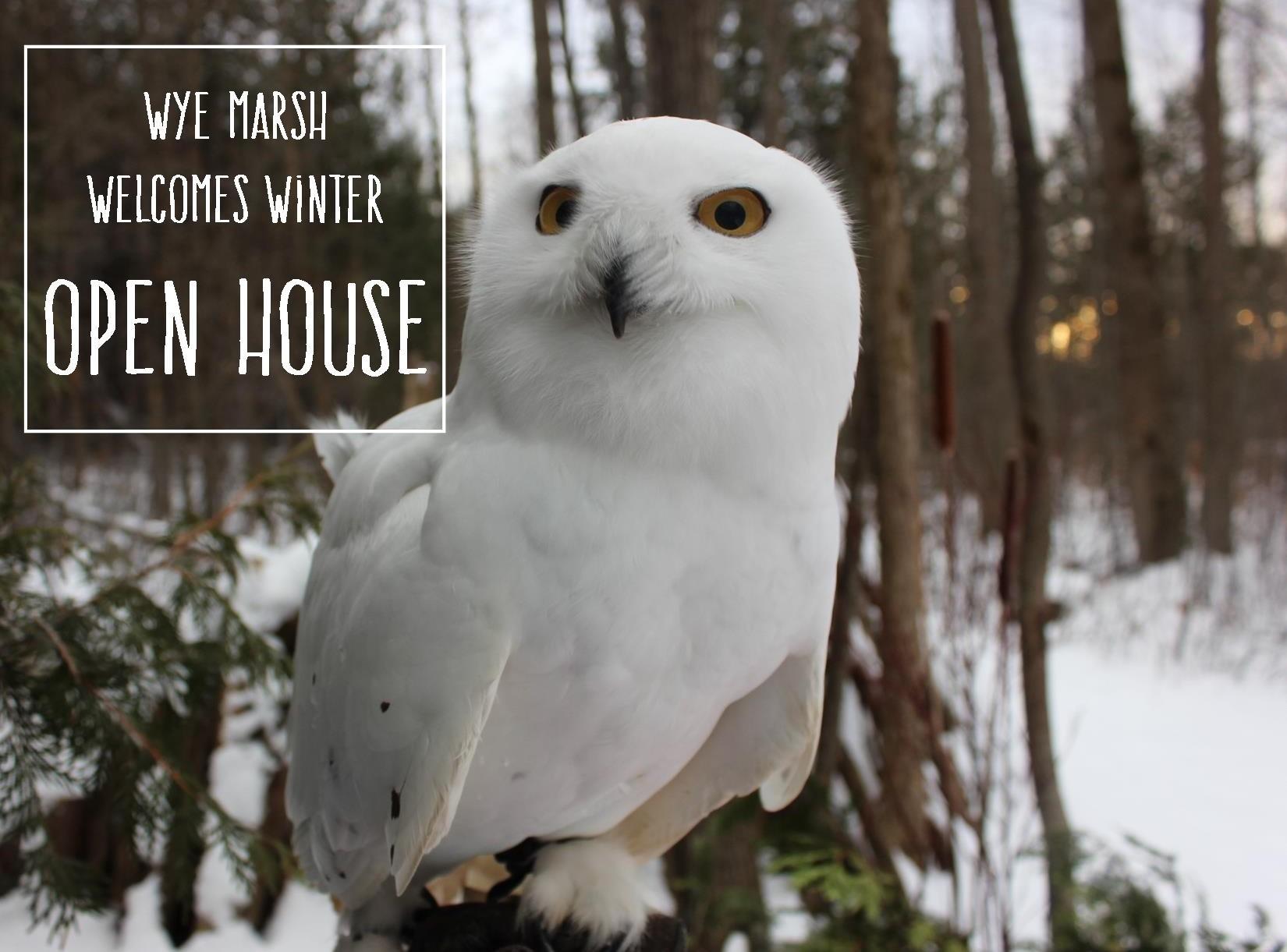 WMWW Open House - Wye Marsh Welcomes Winter Open House