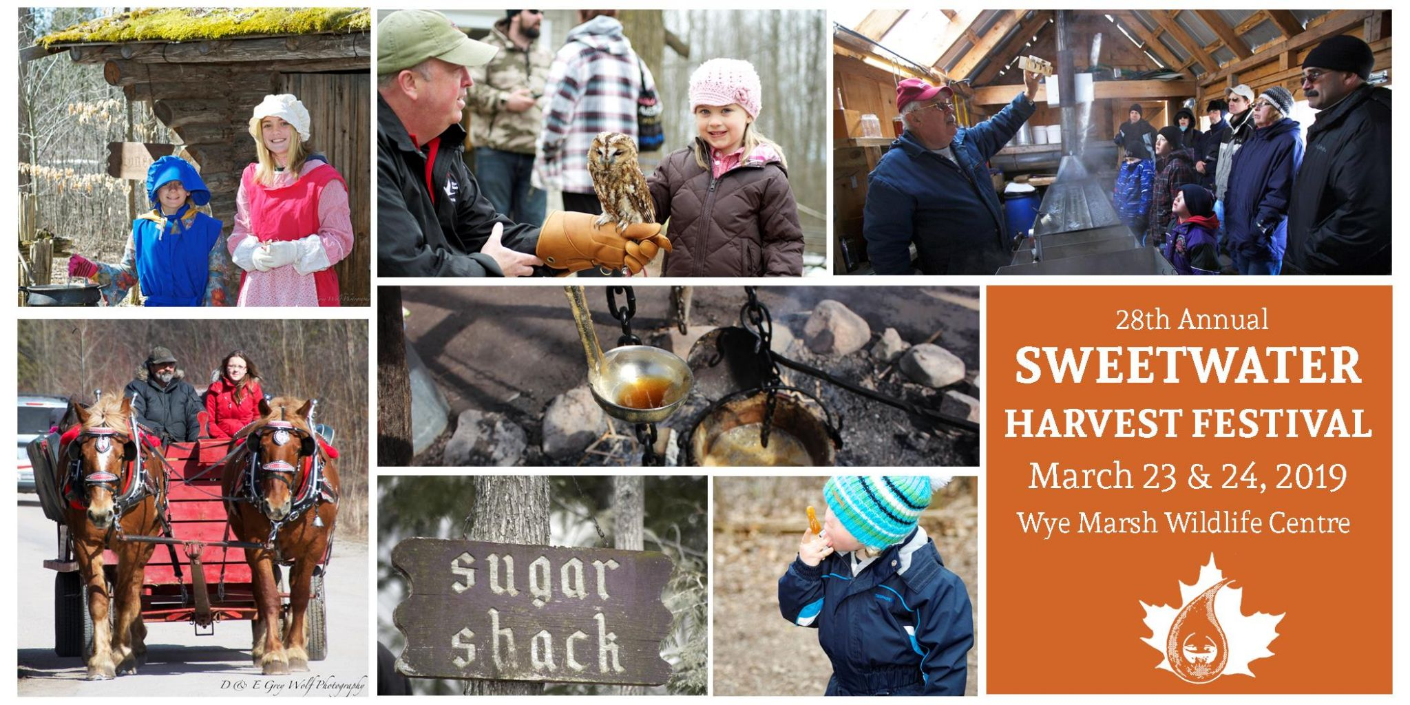 SW Collage with Info - 28TH ANNUAL SWEETWATER HARVEST FESTIVAL