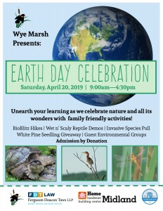 Earth Day Poster 232x300 - EARTH DAY AT WYE MARSH