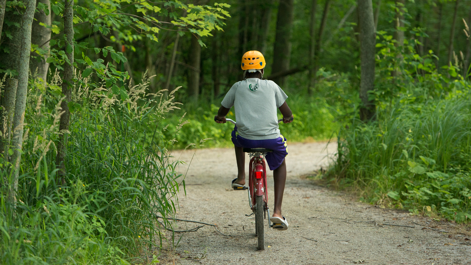 horseshoe - Beautiful Cycling Locations in Ontario's Lake Country