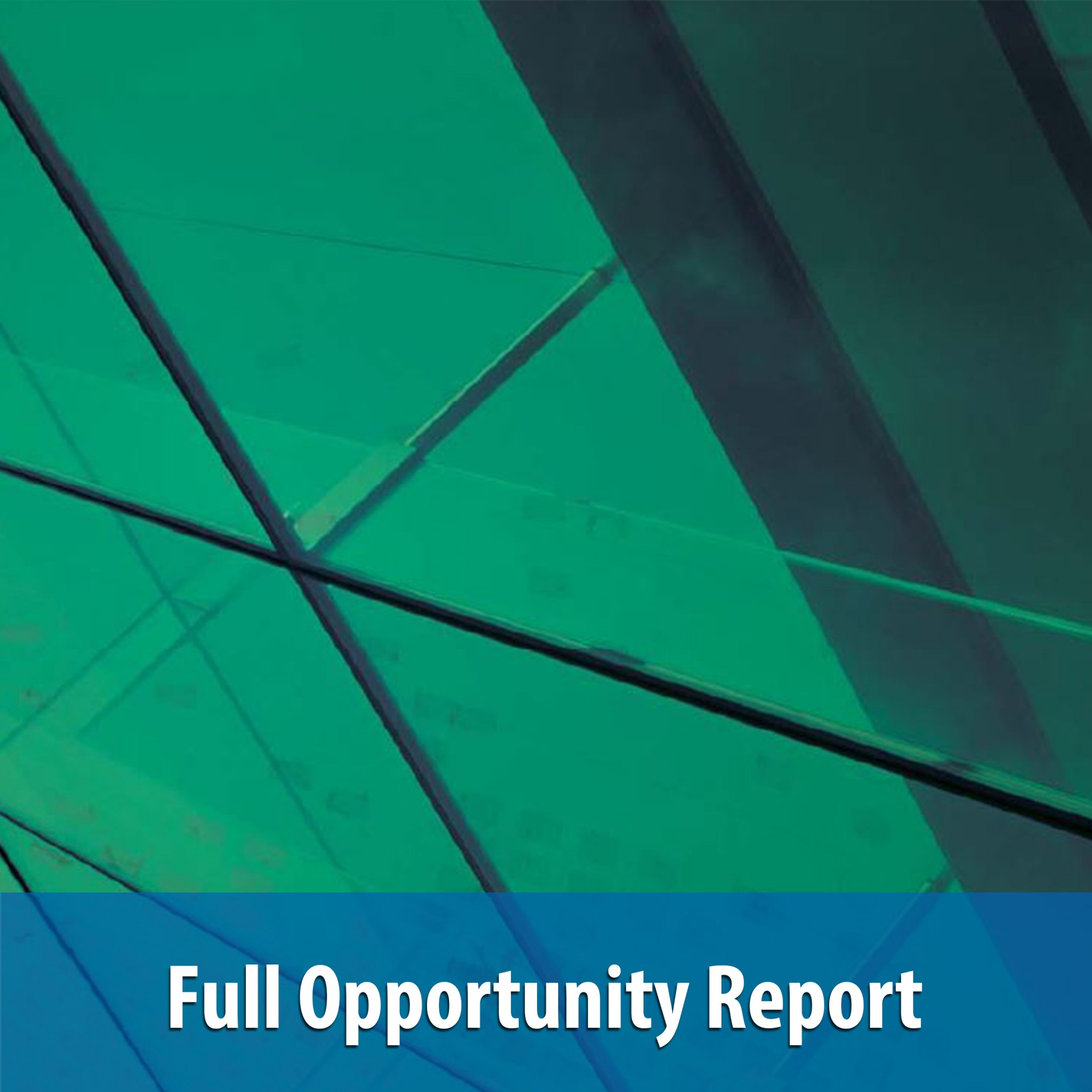 Full Opportunity Report - Invest