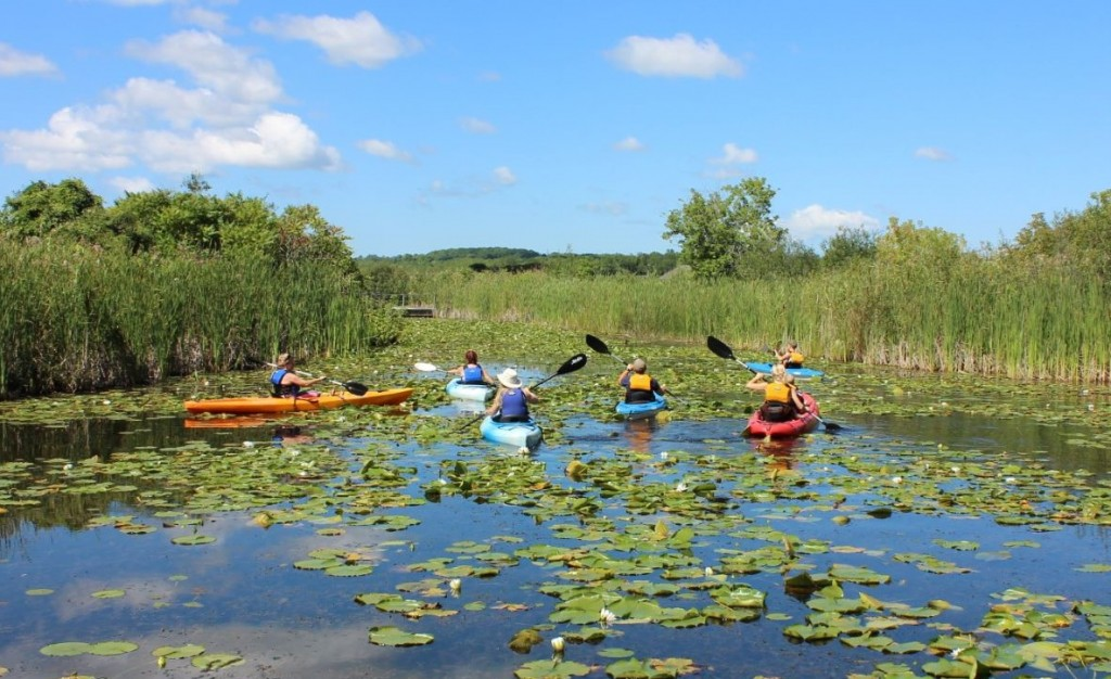 Kayaking EcoTour Zoom 4 1024x626 - 3RD ANNUAL SNOW-GA BENEFITING THE SHARING PLACE FOOD BANK