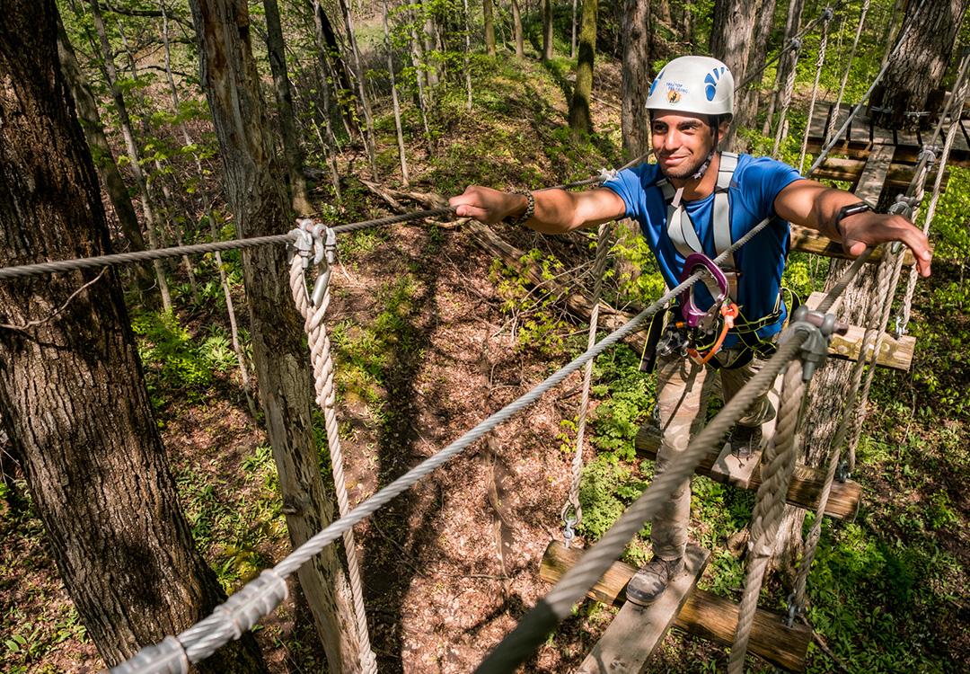 treetop - Experiences