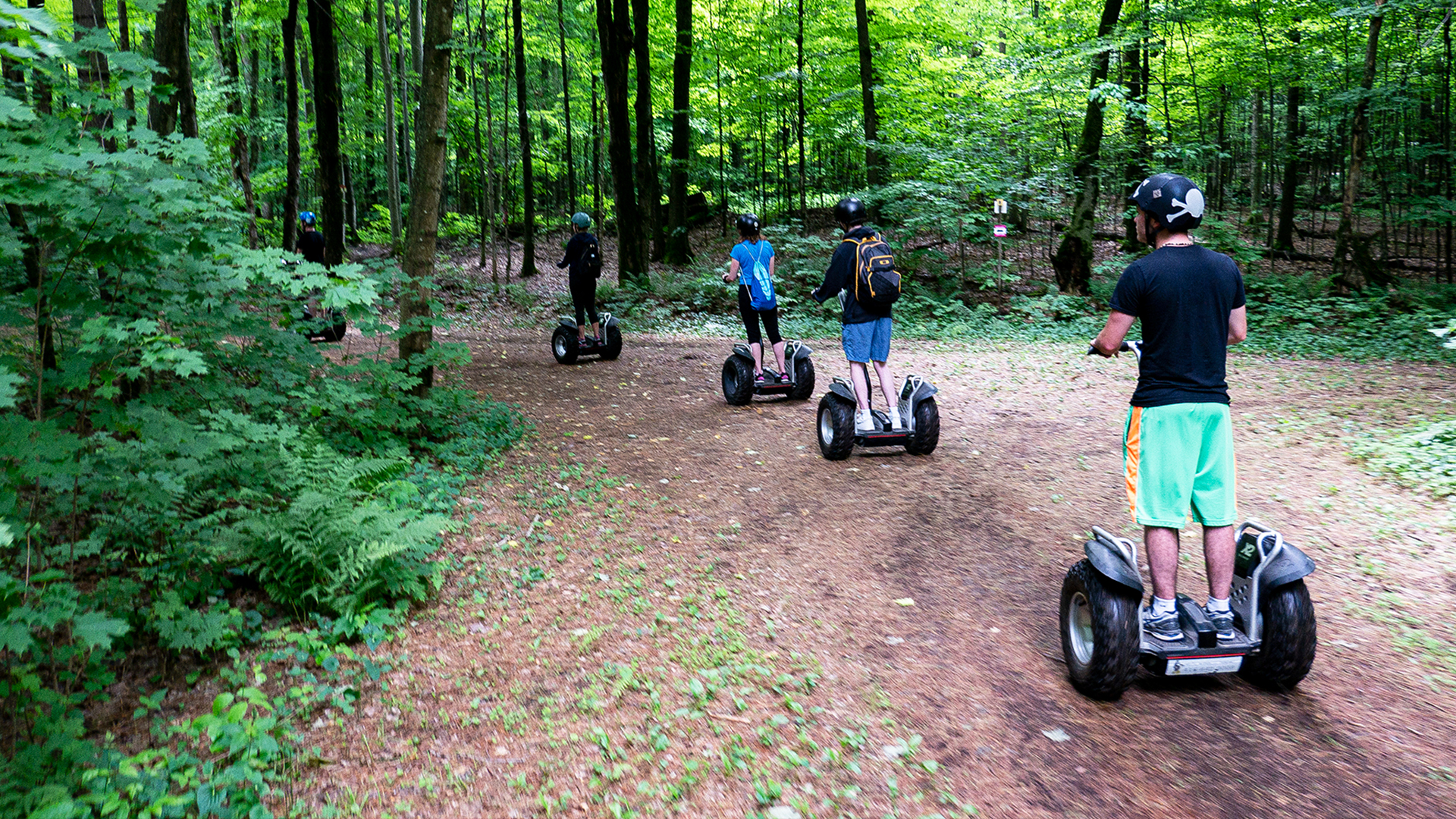 hardwood - Adventure Day in Oro-Medonte