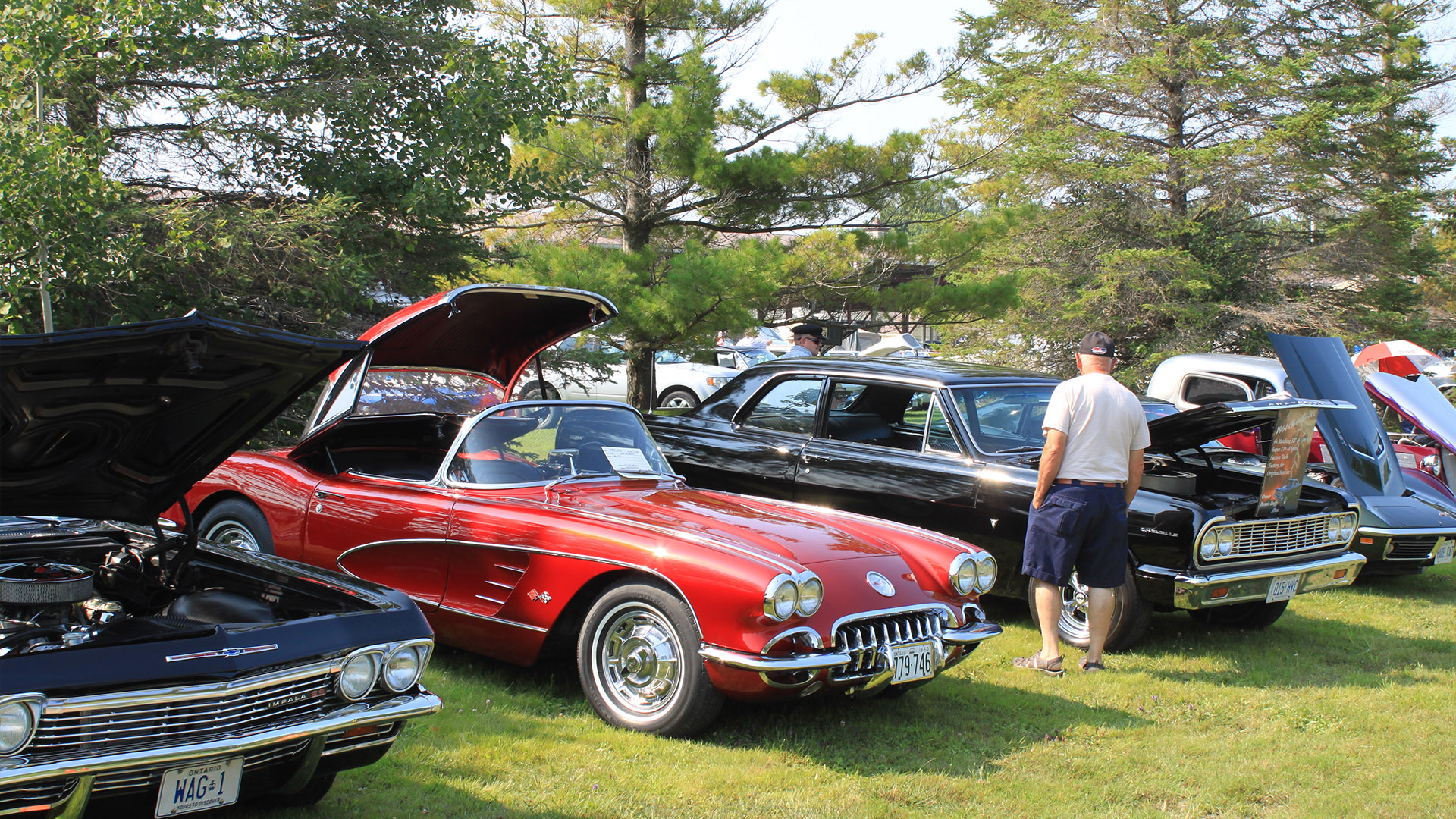 ramara car show - July Events You Don't Want To Miss!
