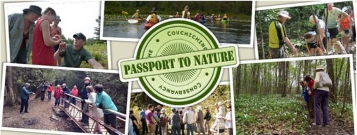 cOUCHICHING - PASSPORT TO NATURE: IT'S ALL ABOUT TREES