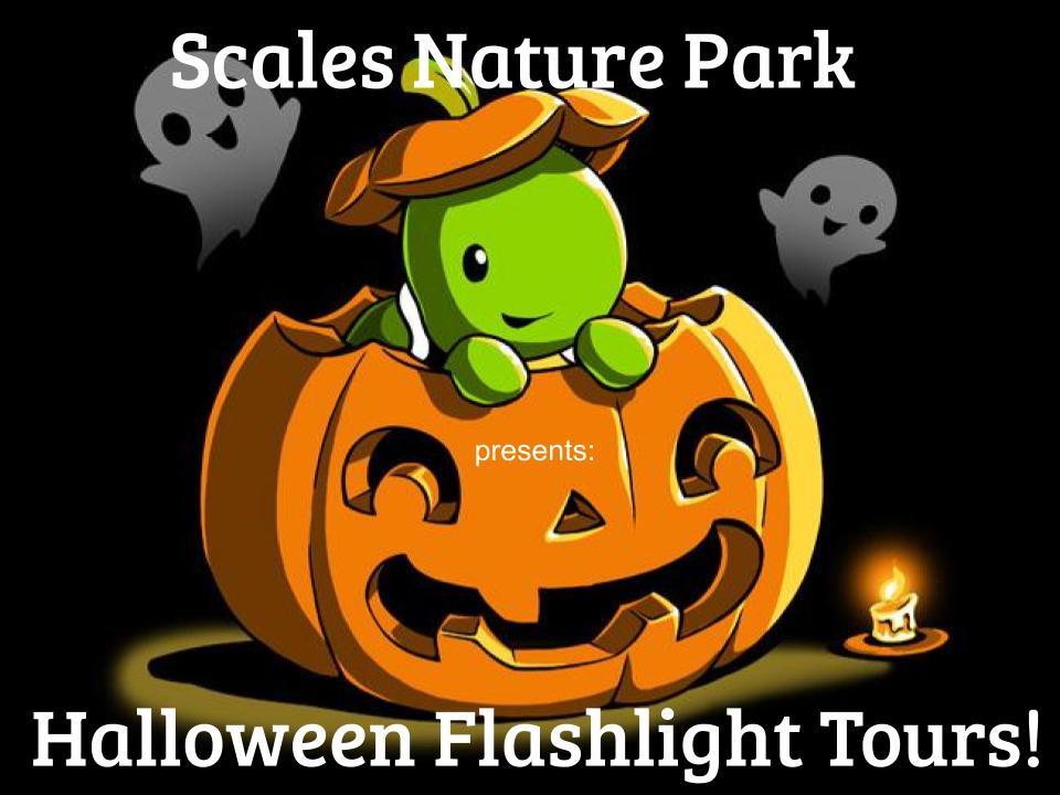 Halloween 2019 Flashlight Tours Poster - SCALES NATURE PARK HALLOWEEN FLASHLIGHT TOURS!
