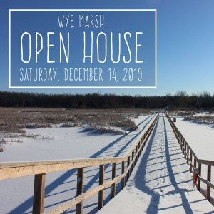Open House Image w Text 300x300 - WYE MARSH WELCOMES WINTER OPEN HOUSE