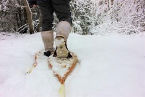Snowshoe FUNdamentals SM 300x200 - SNOWSHOE FUNDAMENTALS