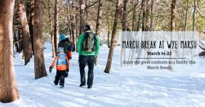 March Break at Wye Marsh UPDATED 300x157 - MARCH BREAK ACTIVITIES AT WYE MARSH