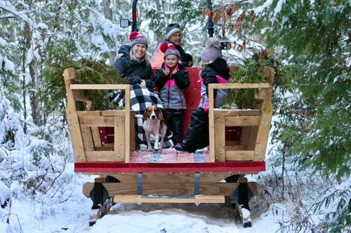 sleigh rides 500 - MAPLE GROVE SYRUP