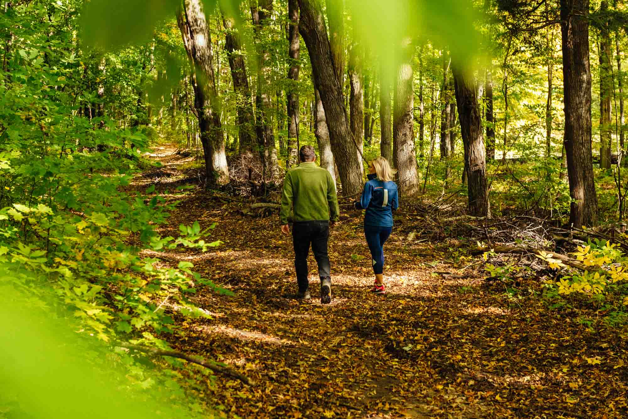 Copeland forest fall oro medonte - Fall tours