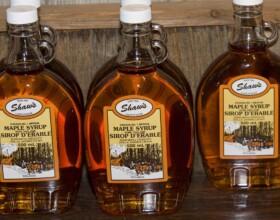 Shaws Maple Syrup 2013 2009-03-22_Sugar Bush_0176 (2)