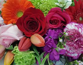 bouquet of multicolour flowers