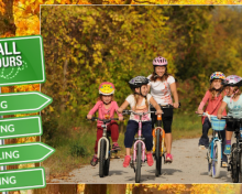 Experience the Magnificent Fall Colours in Ontario's Lake Country