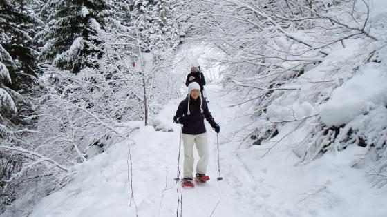 Adult Snowshoe Fun