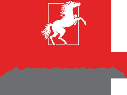 Horseshoe for the Holidays
