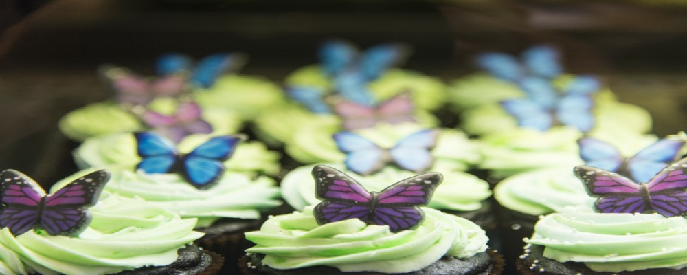 A Sweet Treat Tour Of Ontario's Lake Country