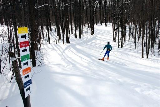 X Country Ski Adventures