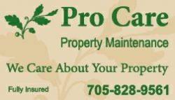 PRO CARE PROPERTY MAINTENANCE