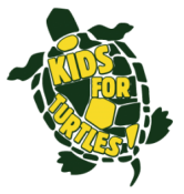 KIDS FOR TURTLES