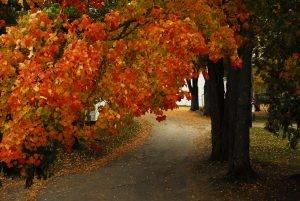 Fall Weekend Getaway