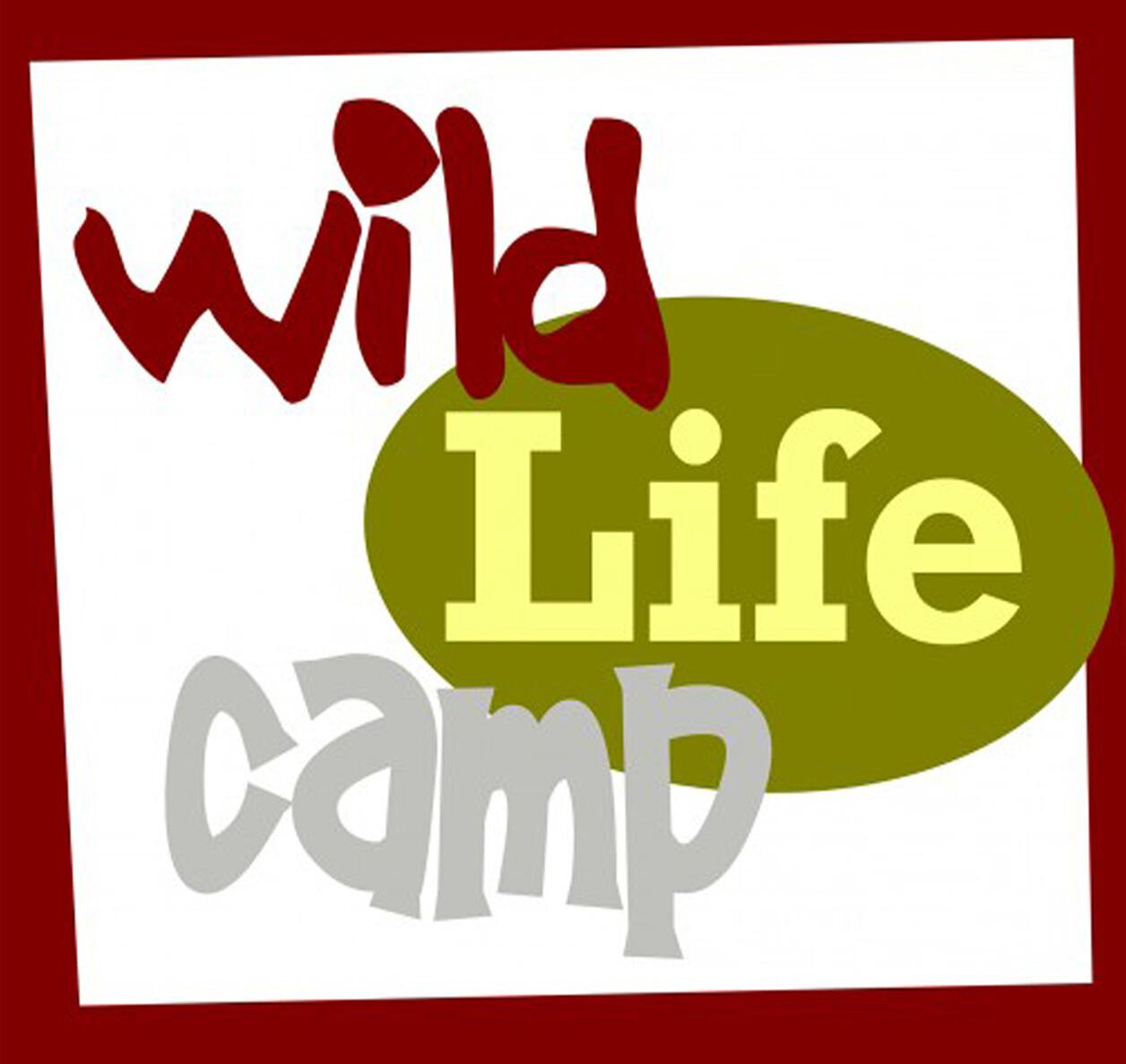 WILD LIFE CAMP