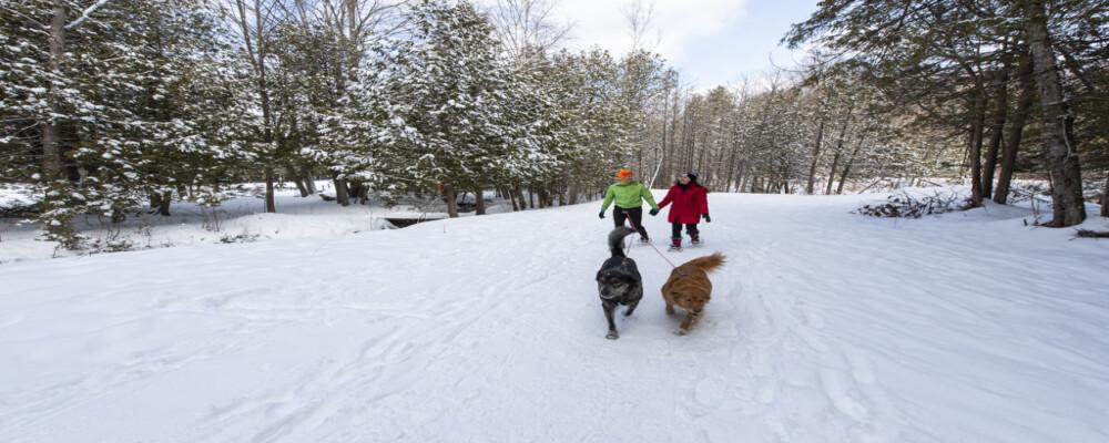 Experience Winter in Oro-Medonte