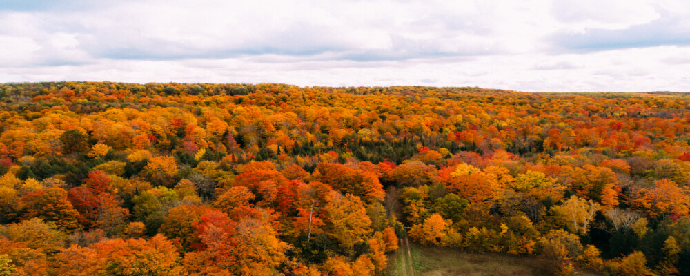 Fall Colours Road Trip, Self-Guided Motorcycle Tours, Mountain Biking & More