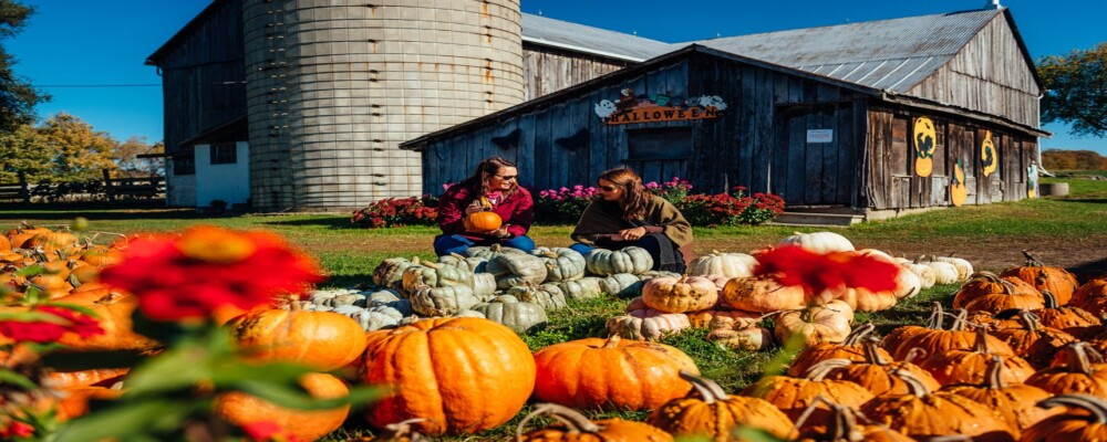 Fall for Oro-Medonte this October